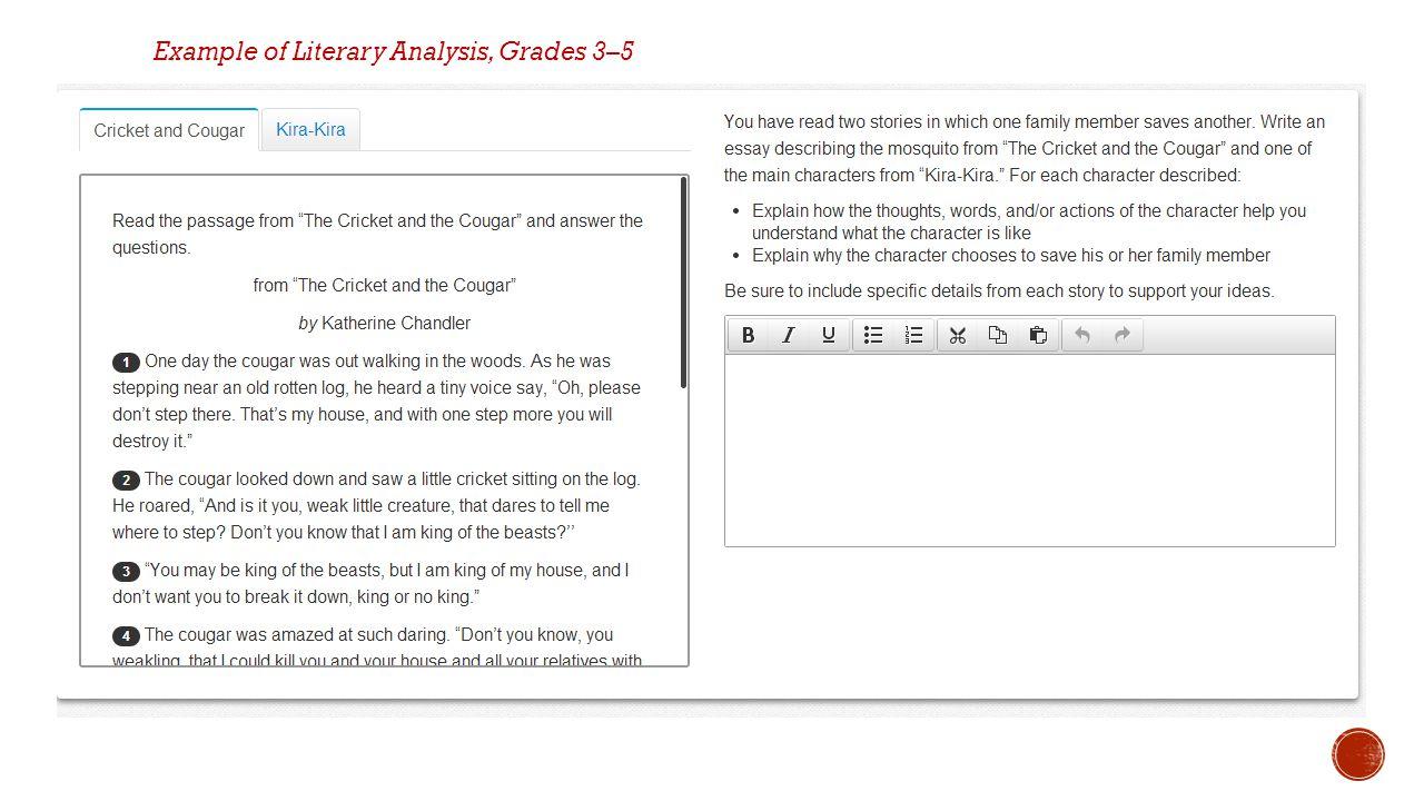 Example of Literary Analysis, Grades 3–5