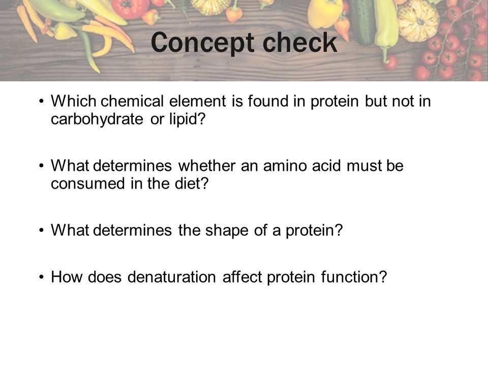Concept check Which chemical element is found in protein but not in carbohydrate or lipid