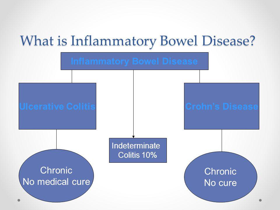 What is Inflammatory Bowel Disease