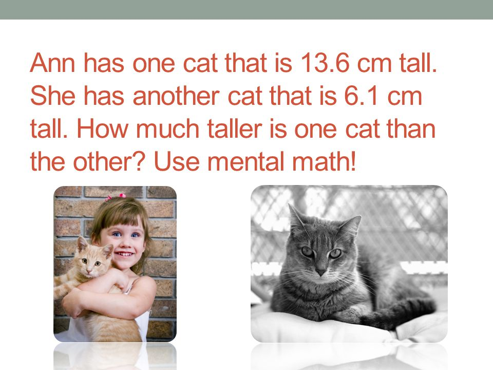 Ann has one cat that is 13. 6 cm tall. She has another cat that is 6