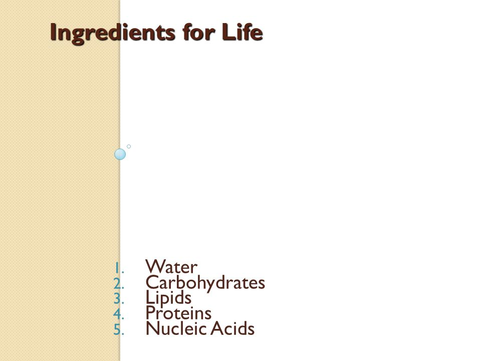 Ingredients for Life Water Carbohydrates Lipids Proteins Nucleic Acids