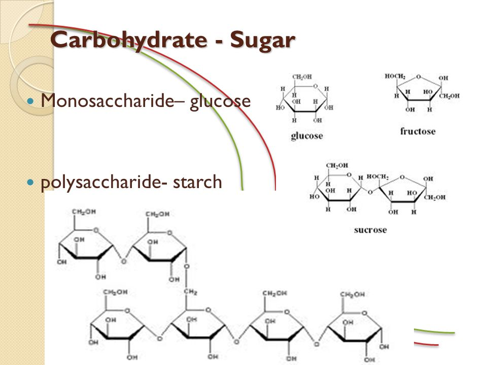 Carbohydrate - Sugar Monosaccharide– glucose polysaccharide- starch
