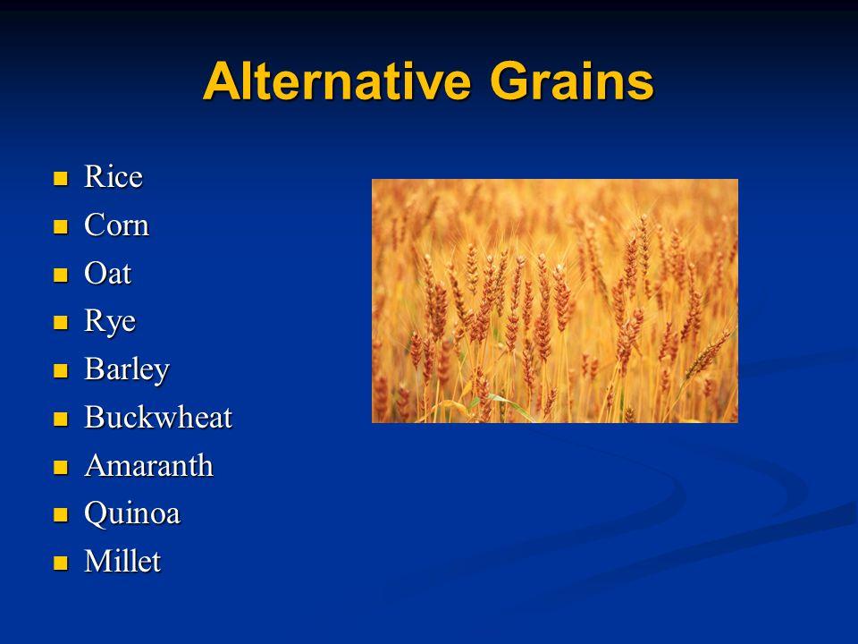 Alternative Grains Rice Corn Oat Rye Barley Buckwheat Amaranth Quinoa