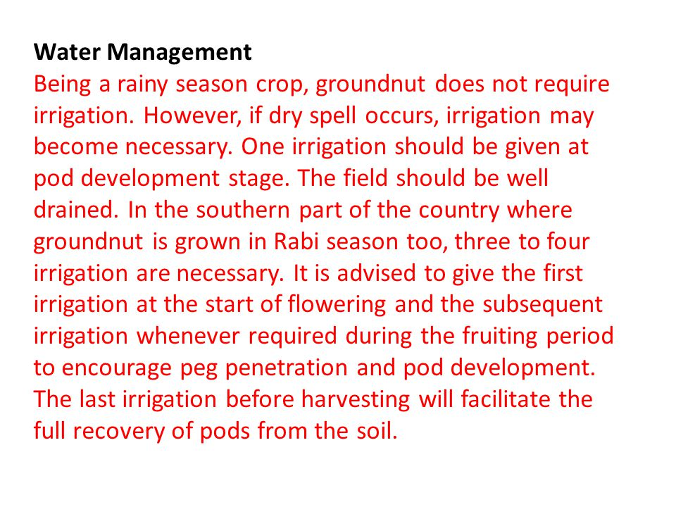 Water Management Being a rainy season crop, groundnut does not require irrigation.