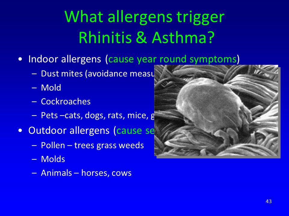 What allergens trigger Rhinitis & Asthma