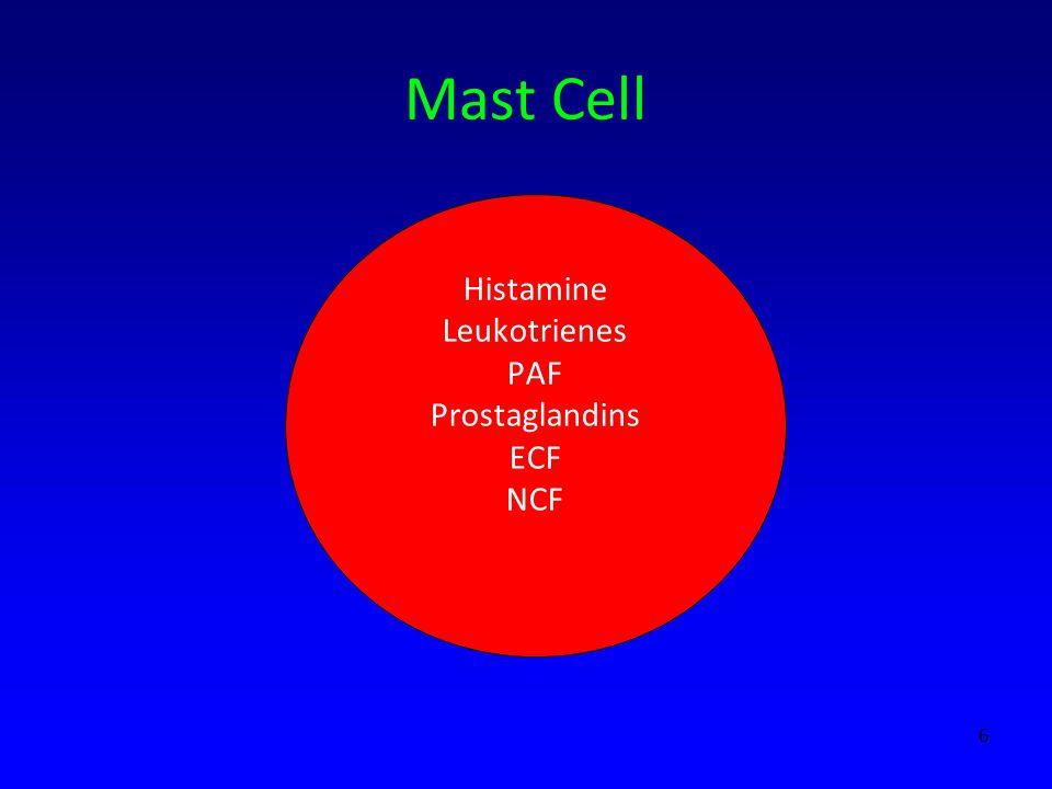 Histamine Leukotrienes PAF Prostaglandins ECF NCF