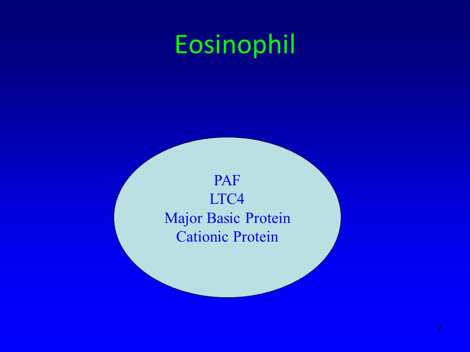 Eosinophil PAF LTC4 Major Basic Protein Cationic Protein