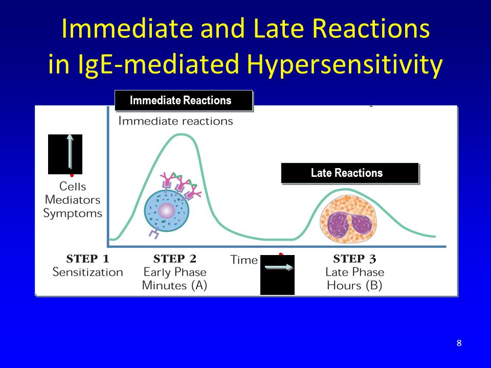 Immediate and Late Reactions in IgE-mediated Hypersensitivity
