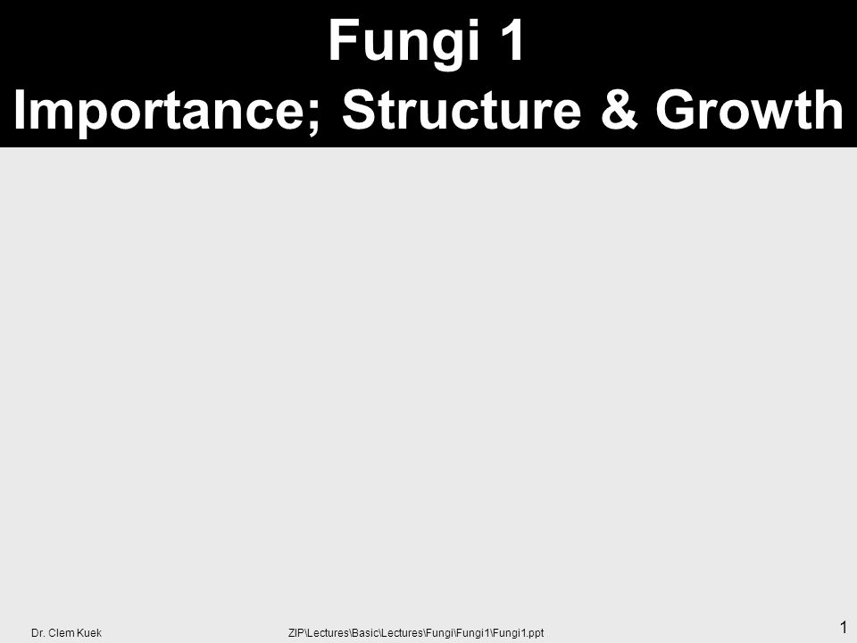 Fungi 1 Importance; Structure & Growth