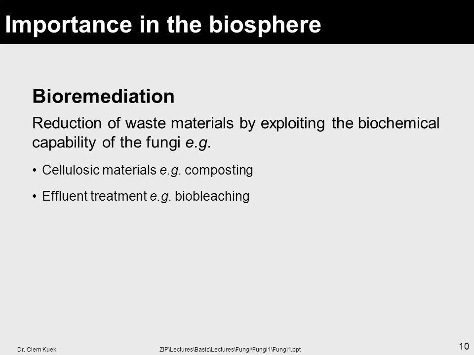 Importance in the biosphere