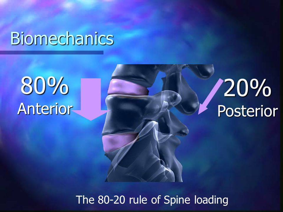 80% Anterior 20% Posterior Biomechanics