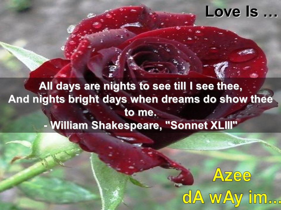Love Is … All days are nights to see till I see thee, And nights bright days when dreams do show thee to me.