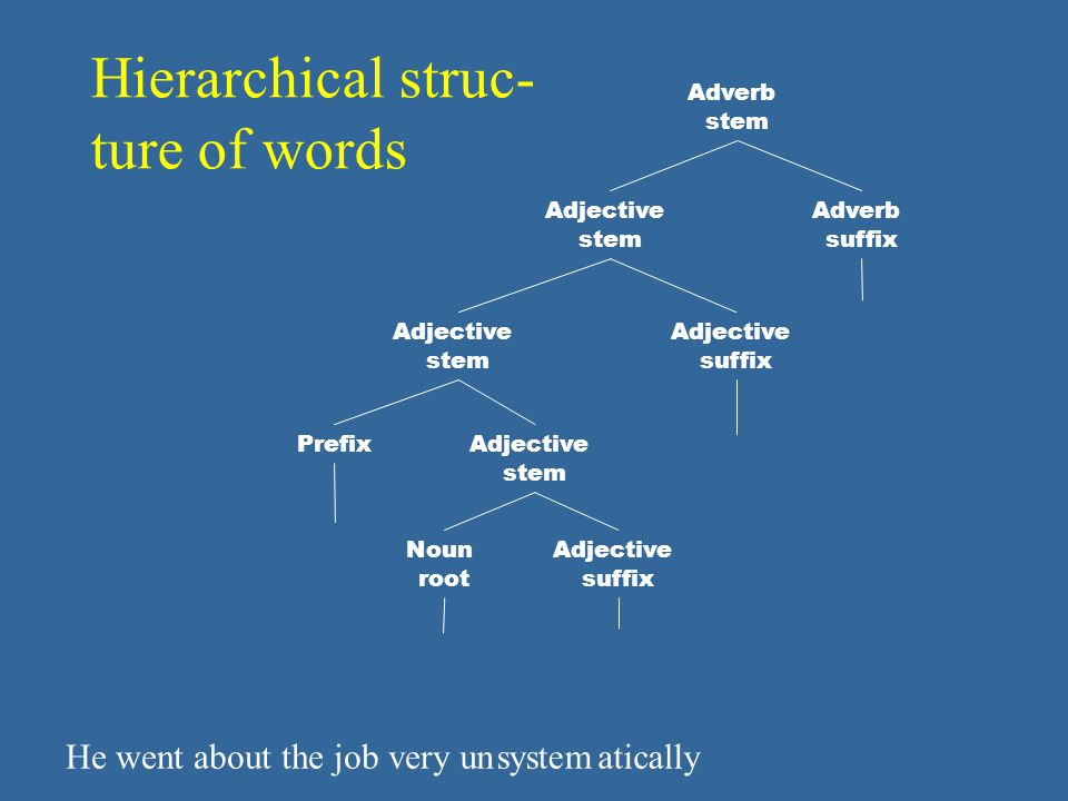 Hierarchical struc- ture of words