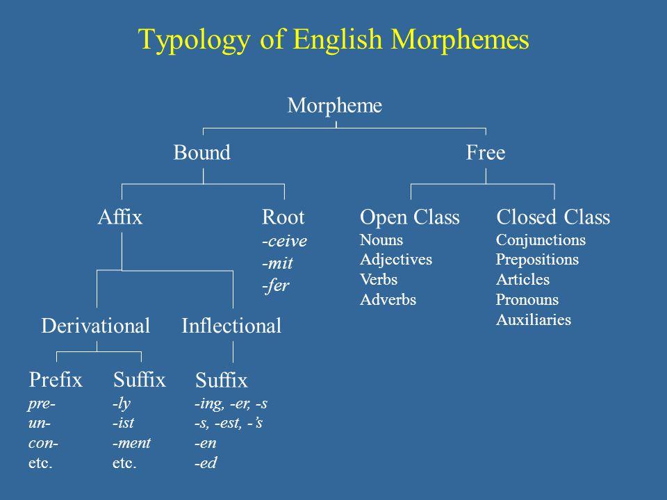 Typology of English Morphemes