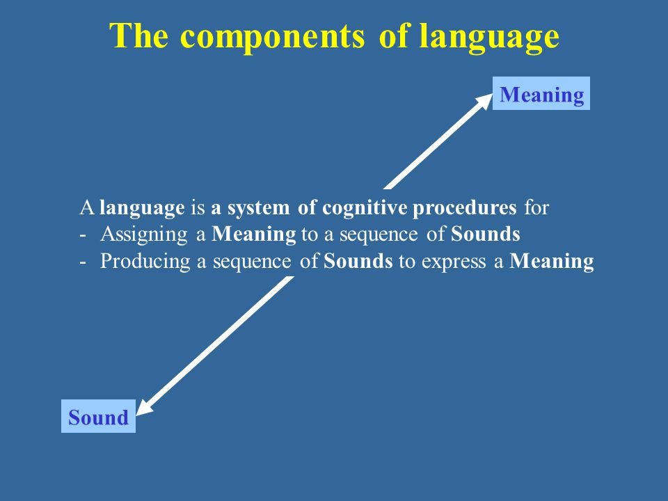 The components of language