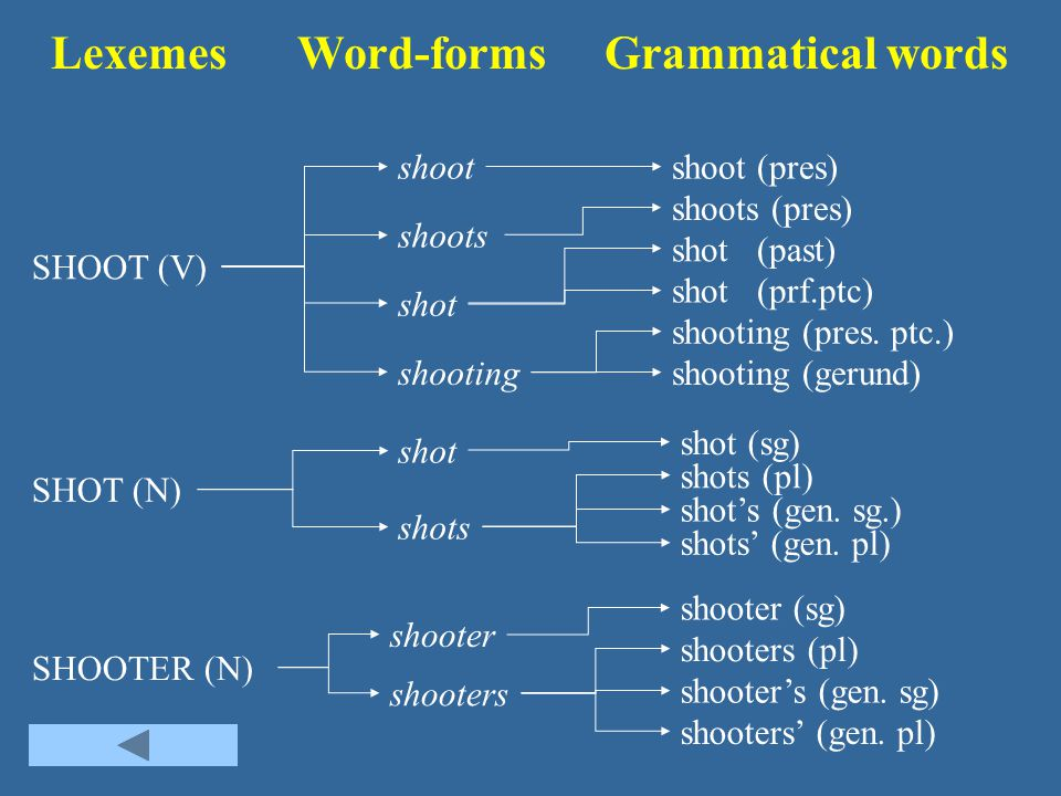 Lexemes Word-forms Grammatical words