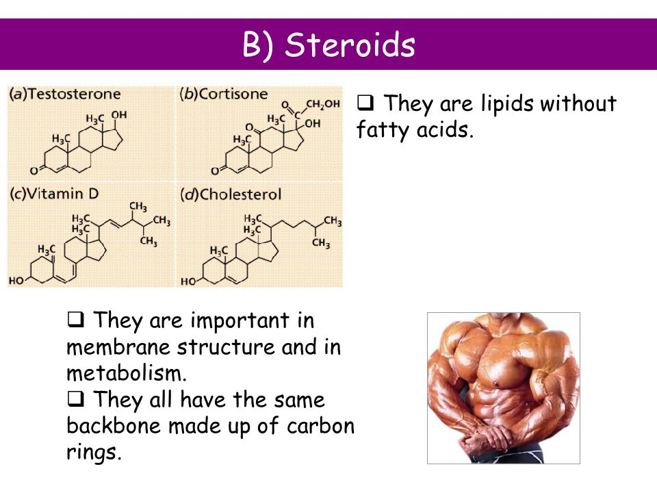 B) Steroids They are lipids without fatty acids.