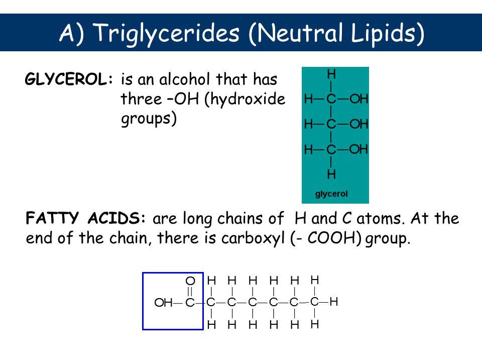 A) Triglycerides (Neutral Lipids)