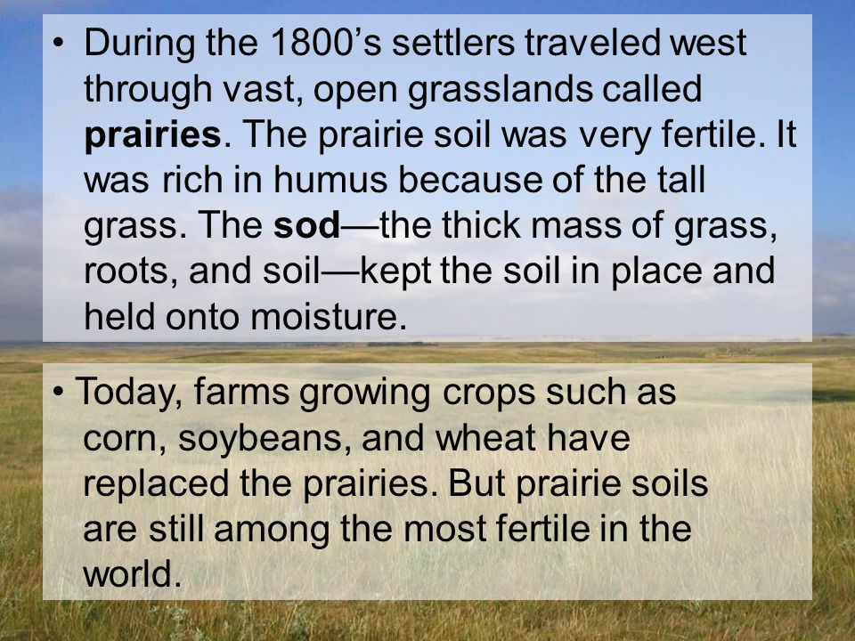 During the 1800's settlers traveled west through vast, open grasslands called prairies. The prairie soil was very fertile. It was rich in humus because of the tall grass. The sod—the thick mass of grass, roots, and soil—kept the soil in place and held onto moisture.
