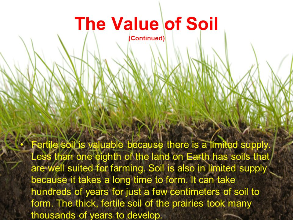 The Value of Soil (Continued)