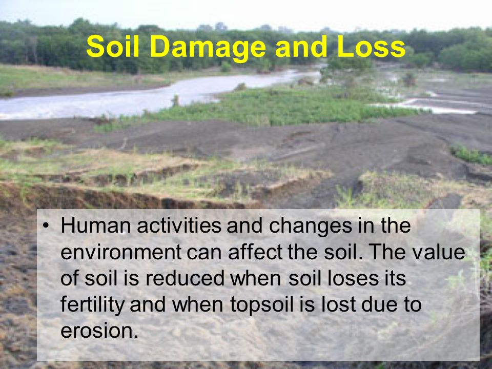 Soil Damage and Loss