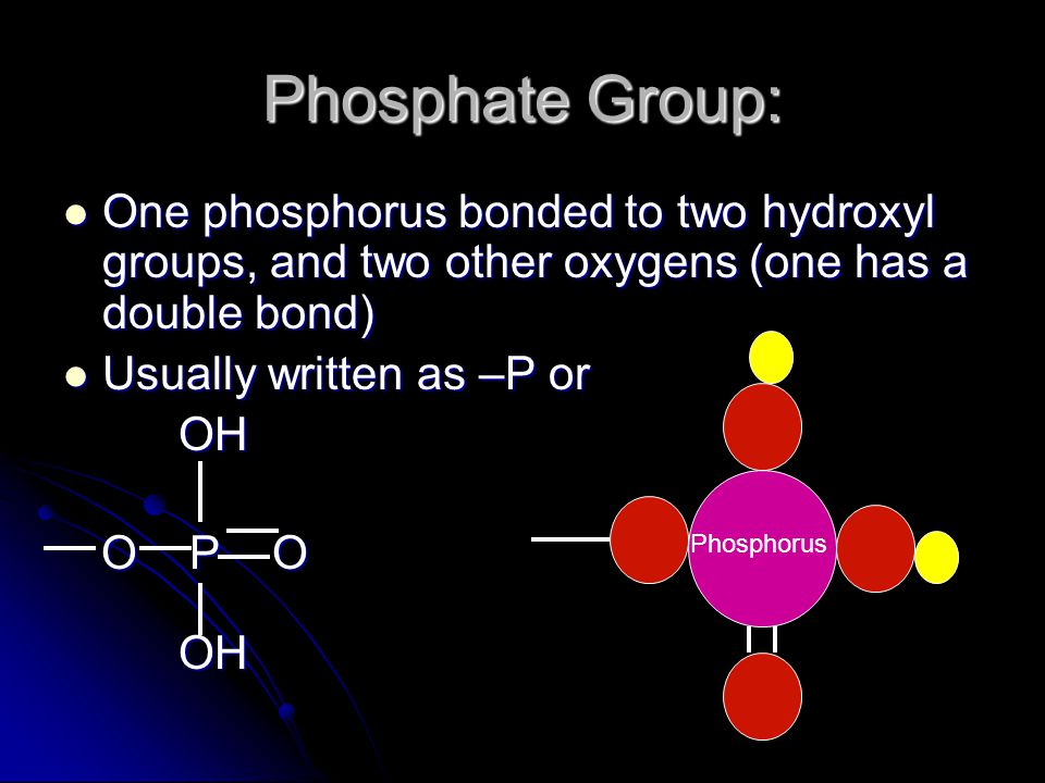 Phosphate Group: One phosphorus bonded to two hydroxyl groups, and two other oxygens (one has a double bond)