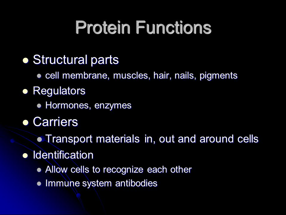 Protein Functions Structural parts Carriers Regulators