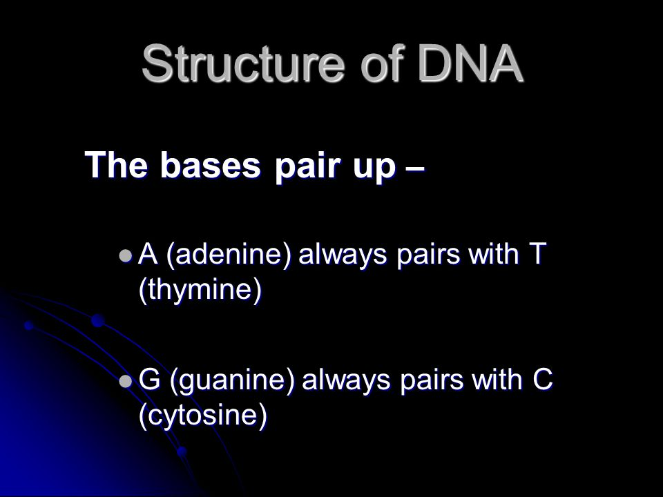 Structure of DNA The bases pair up –