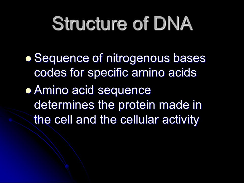 Structure of DNA Sequence of nitrogenous bases codes for specific amino acids.