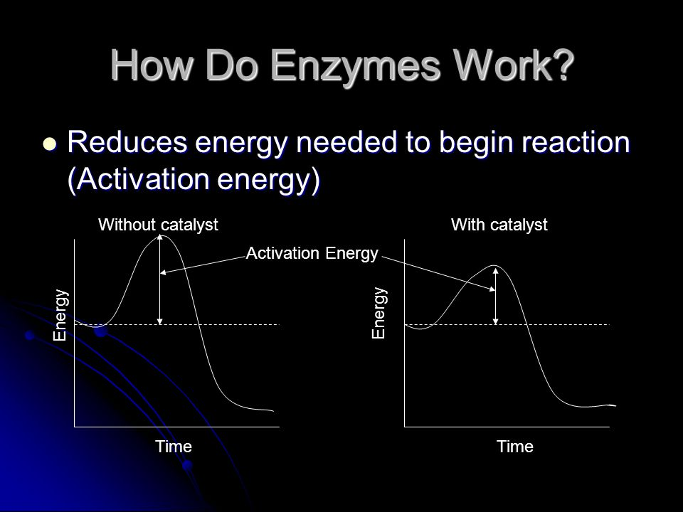 How Do Enzymes Work Reduces energy needed to begin reaction (Activation energy) Without catalyst.