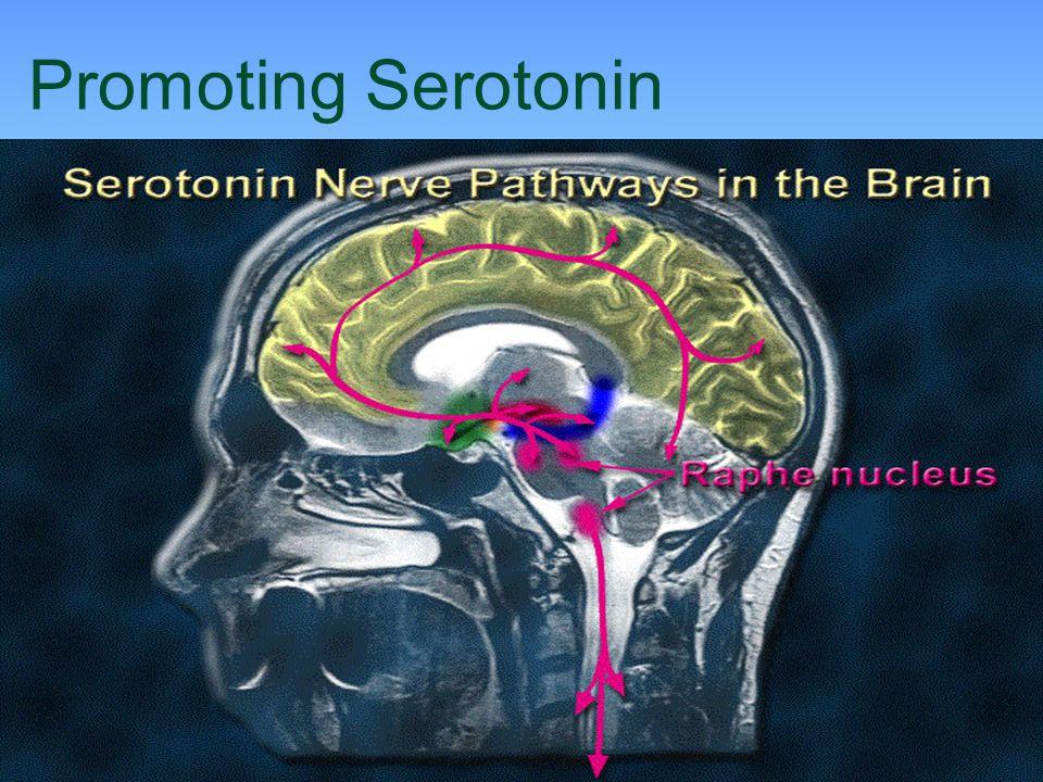 Promoting Serotonin