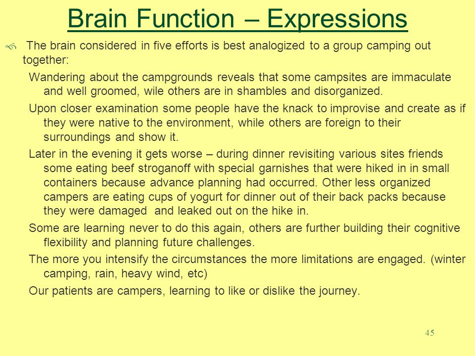 Brain Function – Expressions