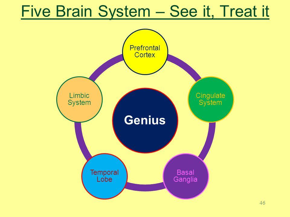 Five Brain System – See it, Treat it
