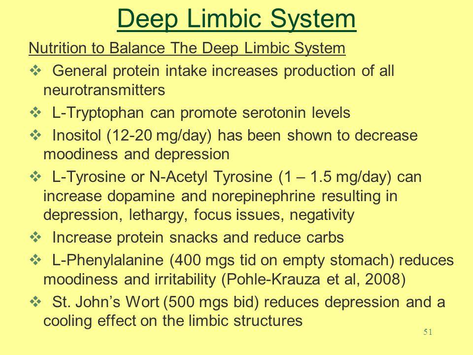Deep Limbic System Nutrition to Balance The Deep Limbic System