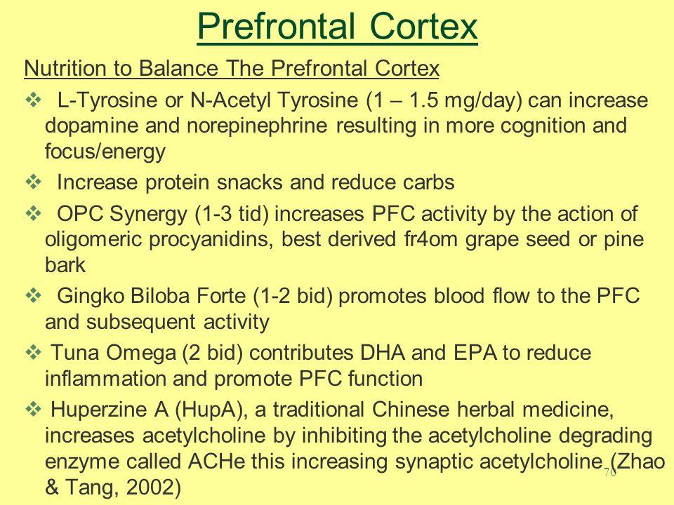Prefrontal Cortex Nutrition to Balance The Prefrontal Cortex