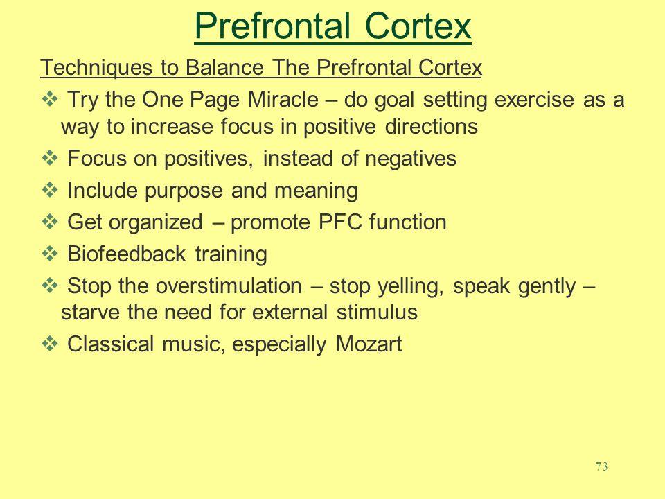 Prefrontal Cortex Techniques to Balance The Prefrontal Cortex