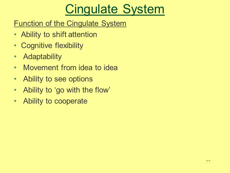 Cingulate System Function of the Cingulate System