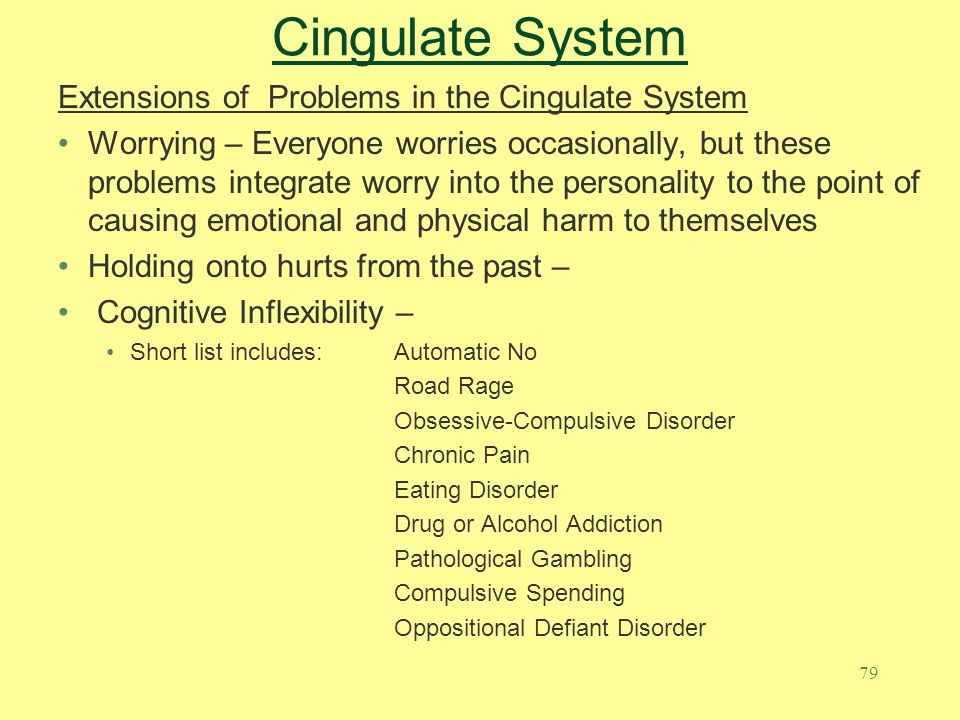 Cingulate System Extensions of Problems in the Cingulate System