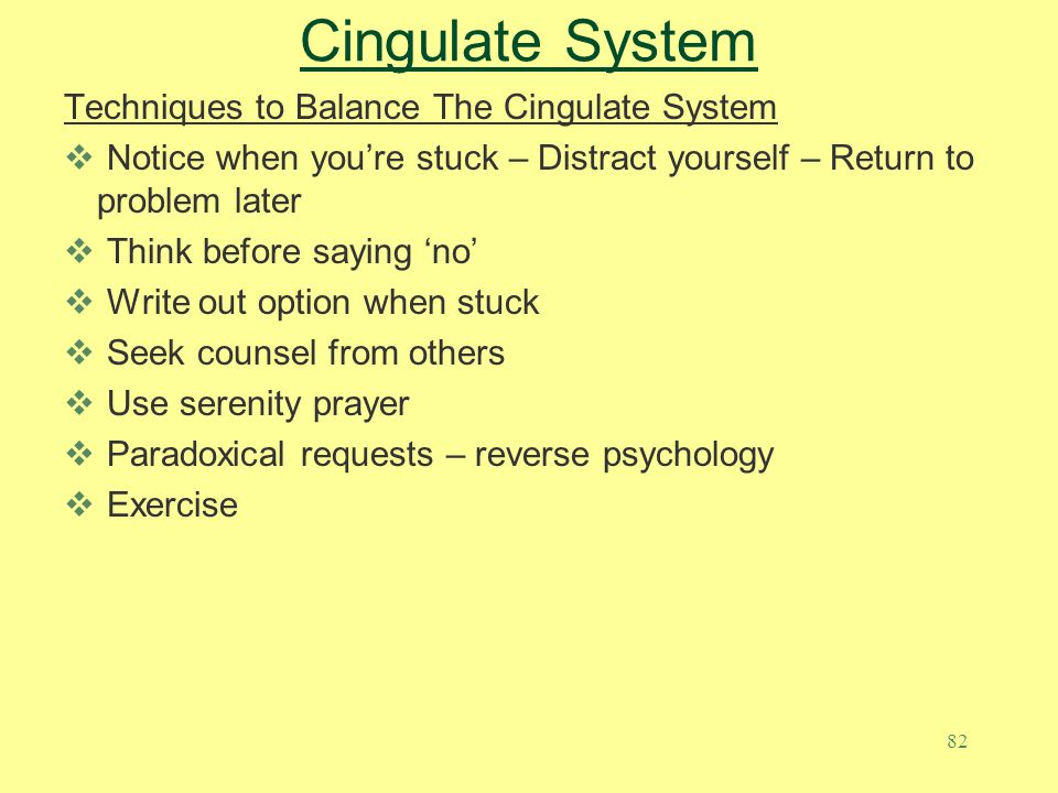 Cingulate System Techniques to Balance The Cingulate System