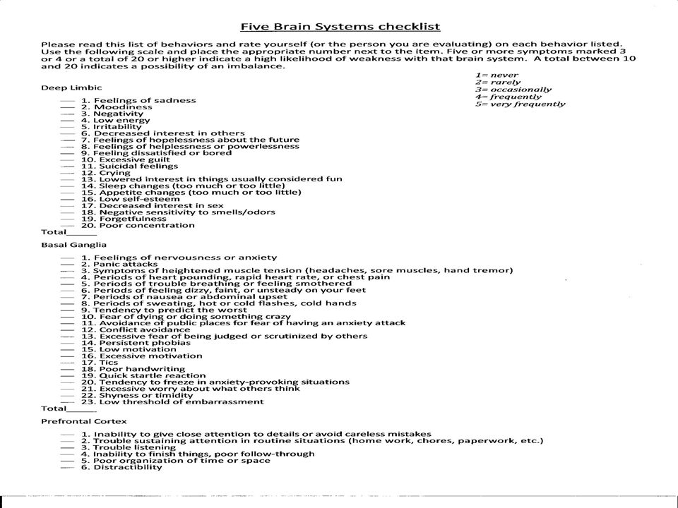 Five Brain Systems Checklist