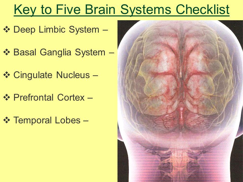 Key to Five Brain Systems Checklist