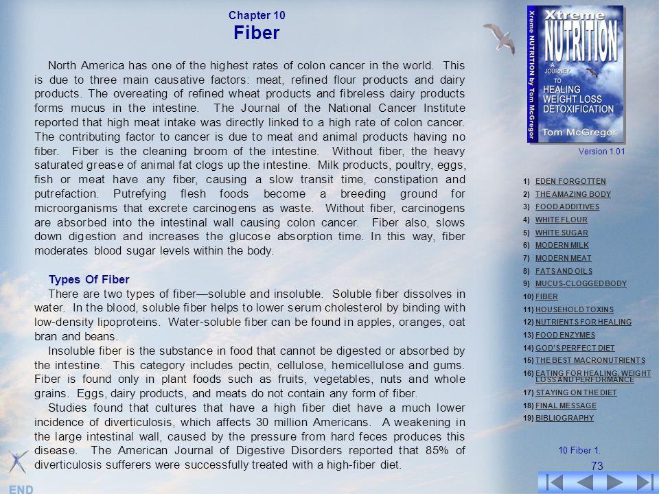 Chapter 10 Fiber.