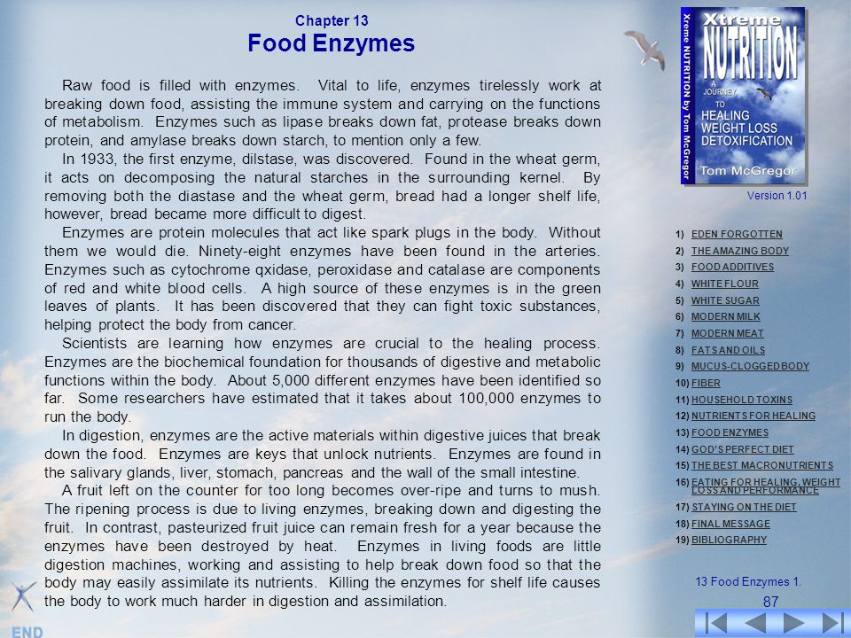 Chapter 13 Food Enzymes.