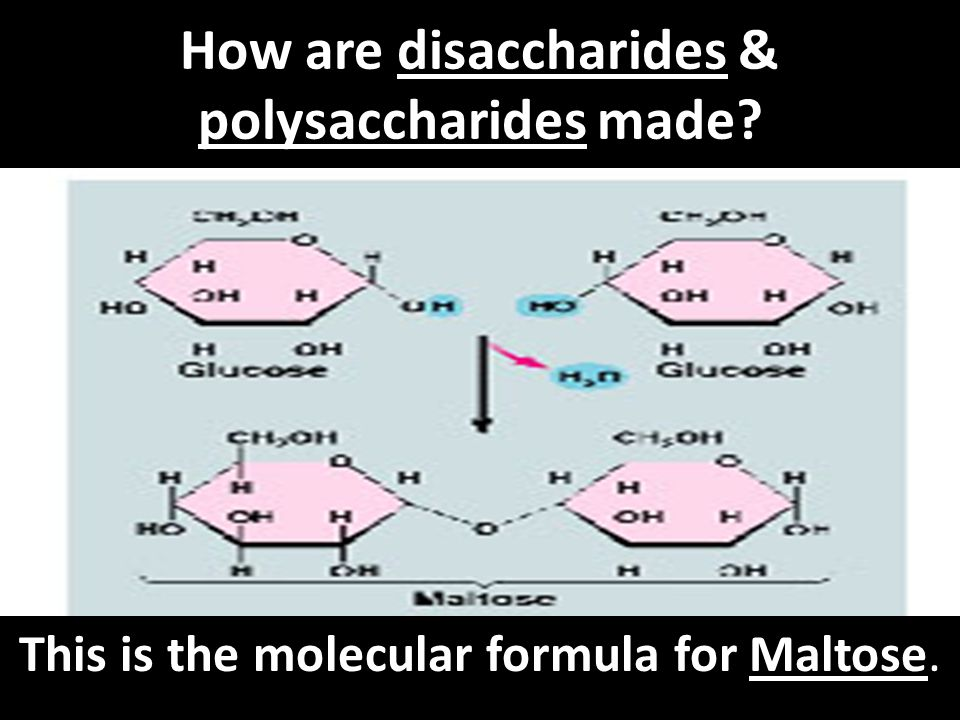 How are disaccharides & polysaccharides made