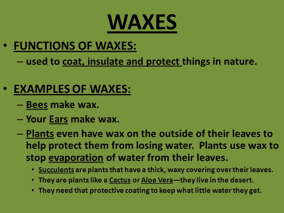 WAXES FUNCTIONS OF WAXES: EXAMPLES OF WAXES: