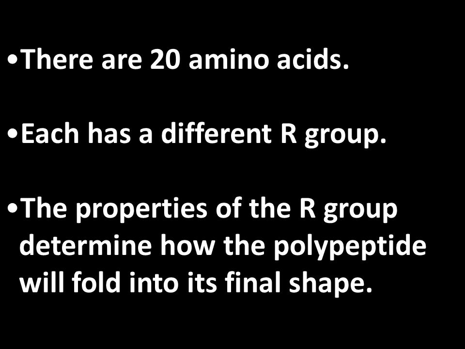 There are 20 amino acids. Each has a different R group. The properties of the R group. determine how the polypeptide.
