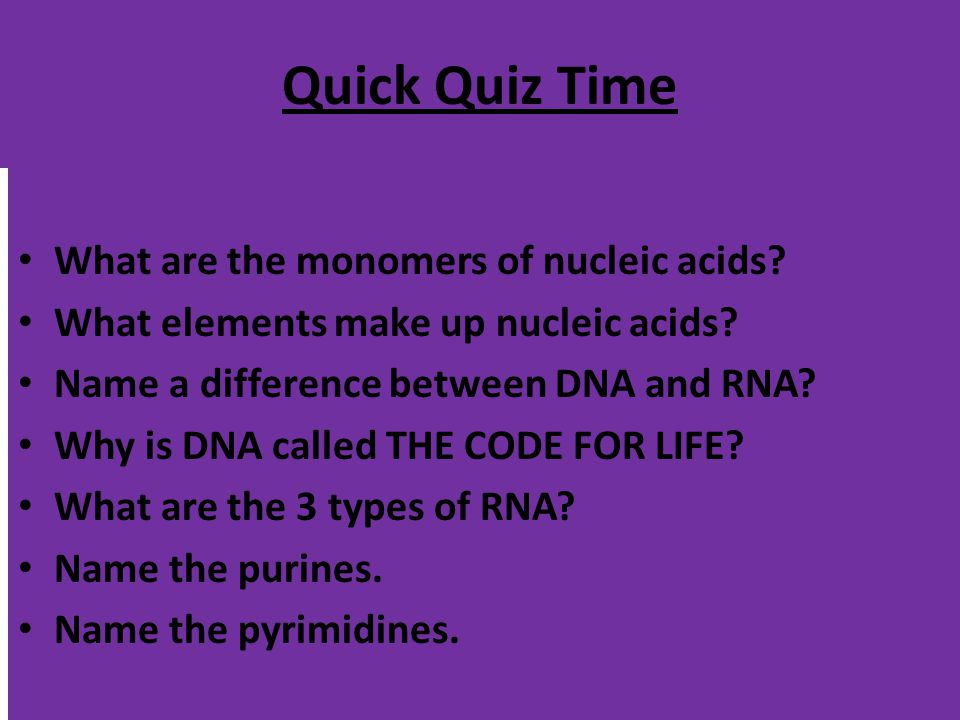 Quick Quiz Time What are the monomers of nucleic acids