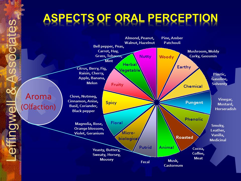 Aspects of Oral Perception