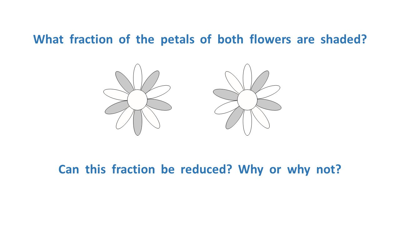 What fraction of the petals of both flowers are shaded
