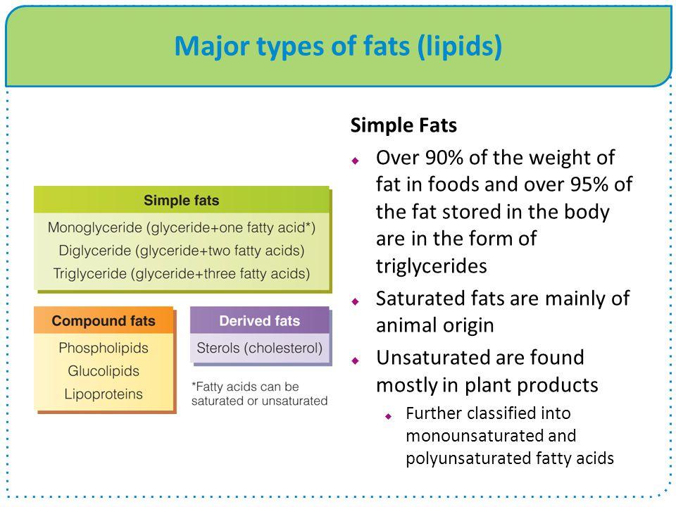 Major types of fats (lipids)